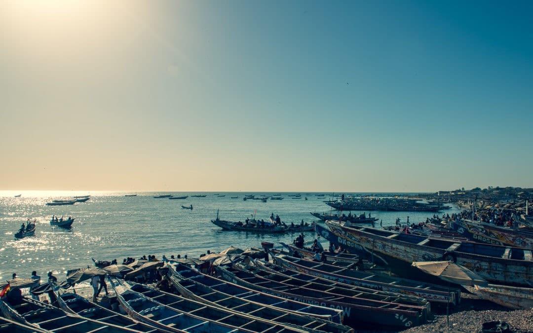 L'arrivée des pêcheurs à M'Bour